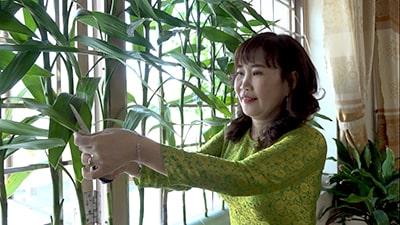 cô giáo Bùi Thị Thu Hằng đang chăm sóc cây