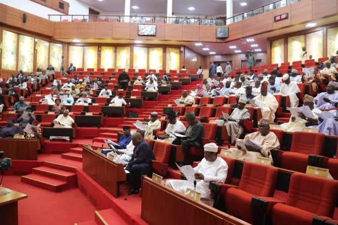 Legal Hurdles Hindering Take-Off Of Mambilla Power Project Resolved — Senate