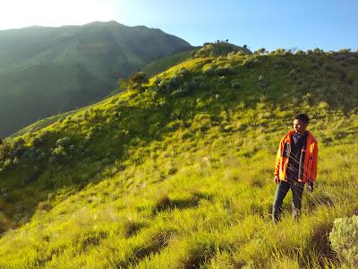foto pemandangan di sabana gunung merbabu