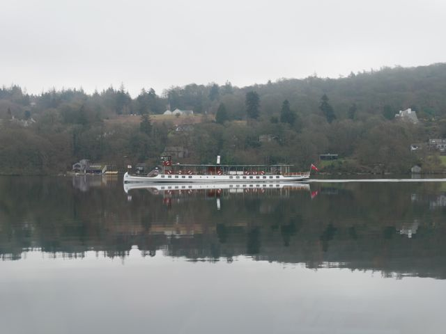 Windermere Cumbria Steamer Tern