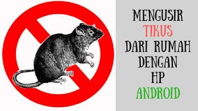 Rumah Anda banyak tikus yang suka mengganggu Cara Mengusir Tikus dari Rumah dengan Hp Android