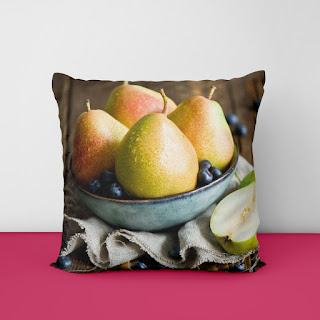24 inch cushion covers
