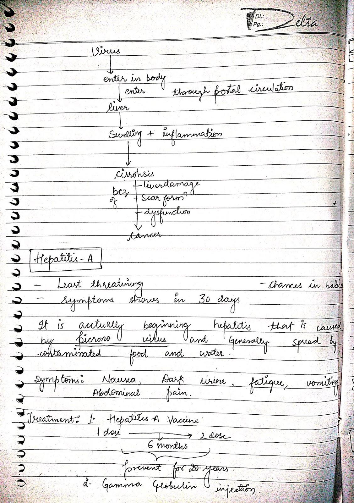 pathophysiology - hepatitis