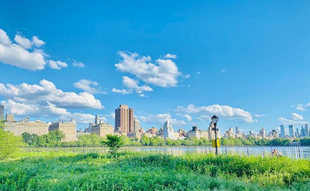 The Central Park Reservoir