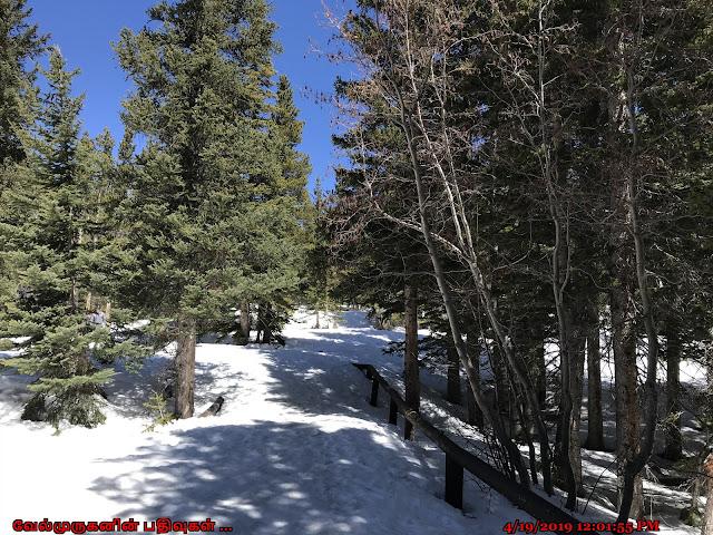 Bear Lake Trail Head