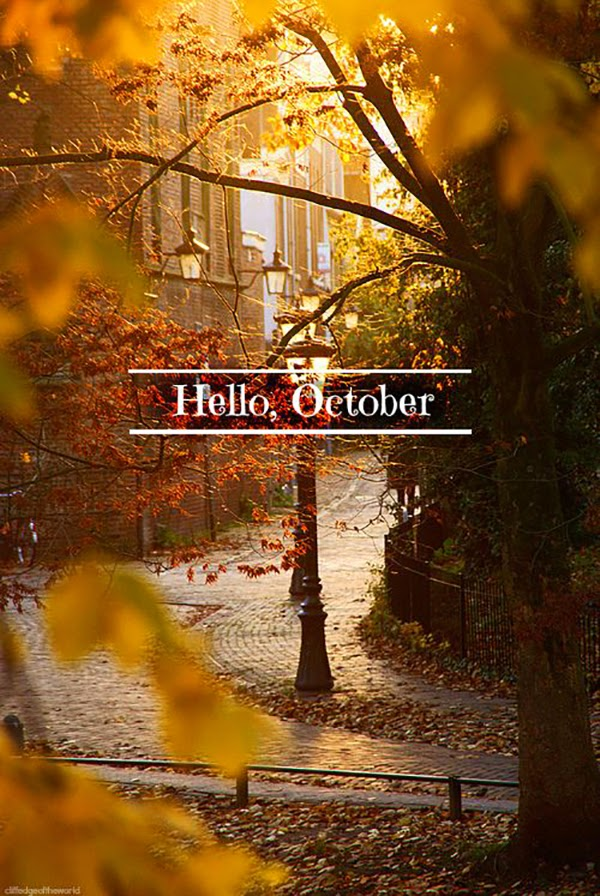 Hello October! Come on over and discover 15 things you must do this October!! Make Crockpot Cider. This image is a fabulous example of all that is lovely about Fall/Autumn. I love that I live in a world where there are seasons! The red apples and cinnamon sticks are perfect scents for the season.