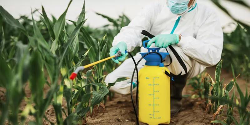 Best Weed Sprayer Buyer's Guide