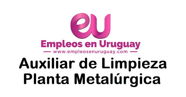 Auxiliar de Limpieza - Planta Metalúrgica
