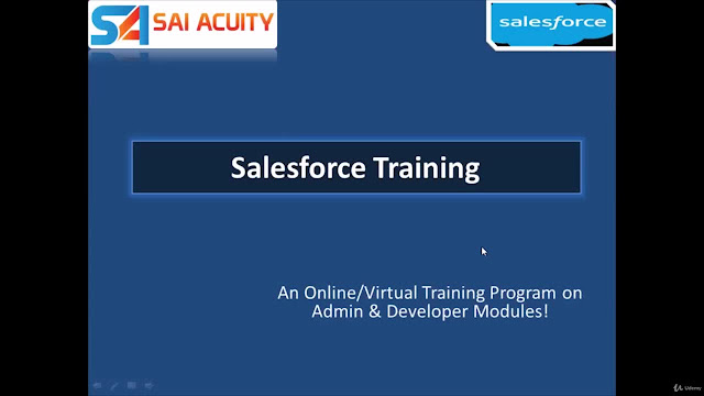 Salesforce Administration and Development