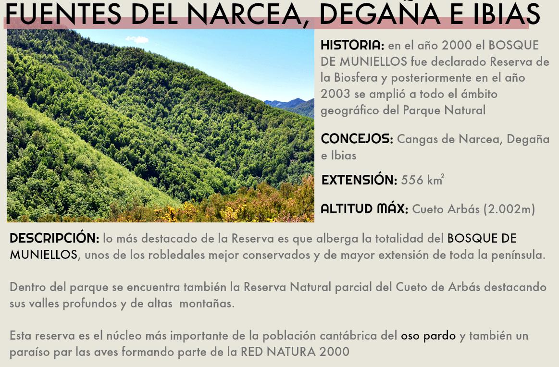 fuentes del narcea degaña e ibias reserva de la biosfera