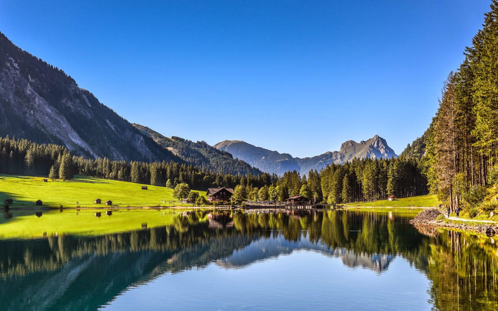 Bergen, bergmeer en bomen in zomer