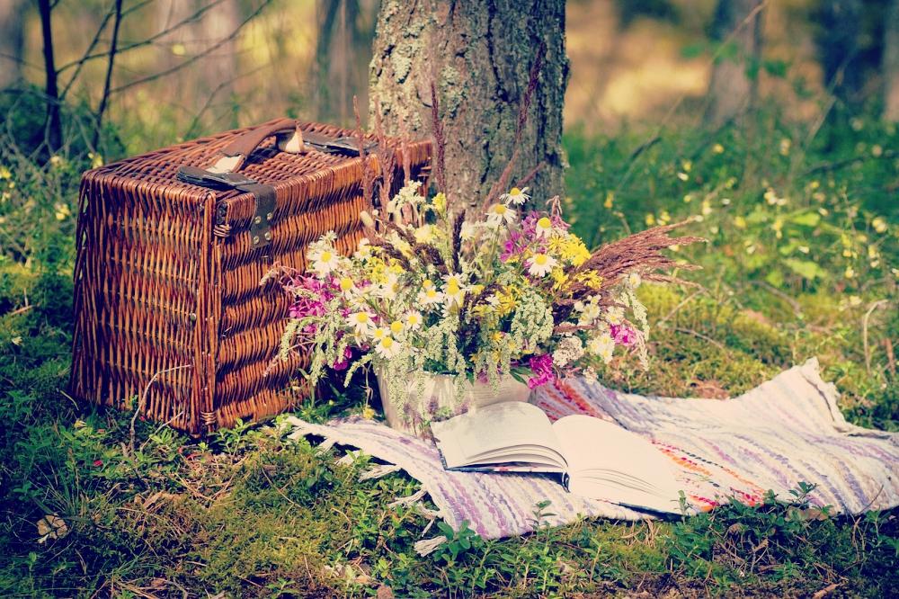 5 tolle Tipps für das perfekte Picknick - das Equipment