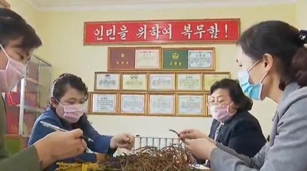 (1) Phyongchon Koryo Medicine Pharmaceutical Factory