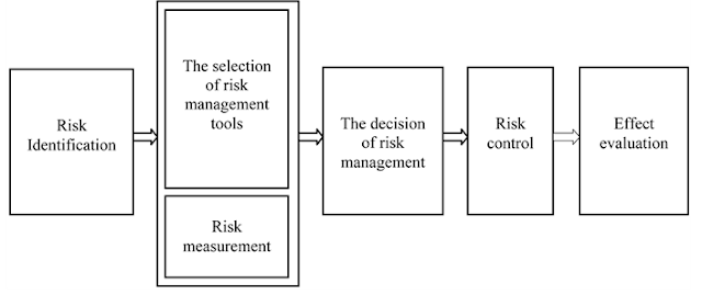 Figure 1. The basic process of risk management