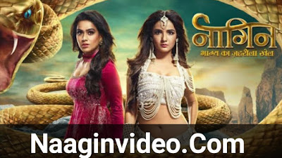 Naagin 4 22nd February 2020 Episode Download