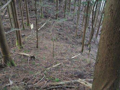 御嶽山神社へ向かう下降地点