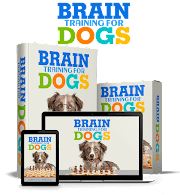 Dog Training Basic Obedience, Behavior Course USA 2021