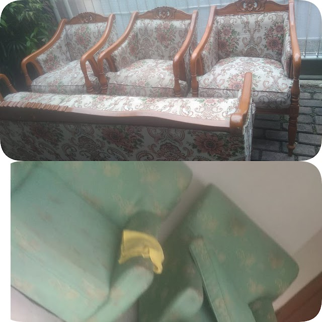 Fogging Interior And Cleaning Sofa