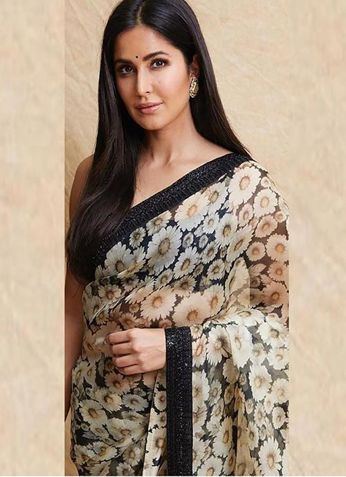 Katrina Kaif in sheer saree bollywood actress