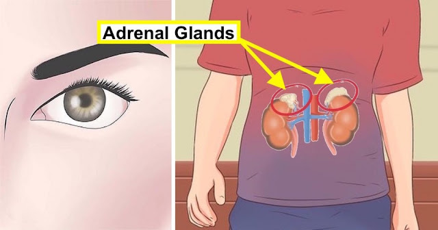 The Simple Eye Test To Test For Adrenal Fatigue And What To Do Immediately If They Are