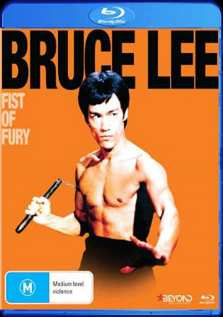 Fist Of Fury 1972 BRRip 350MB Hindi Dual Audio 480p Watch Online Full Movie Download bolly4u