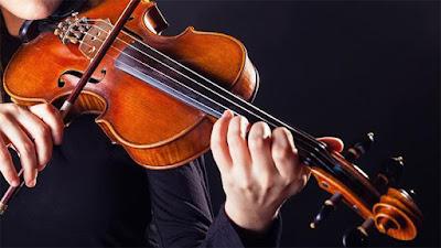 Phân biệt các loại đàn Violin và dòng họ đàn Violin