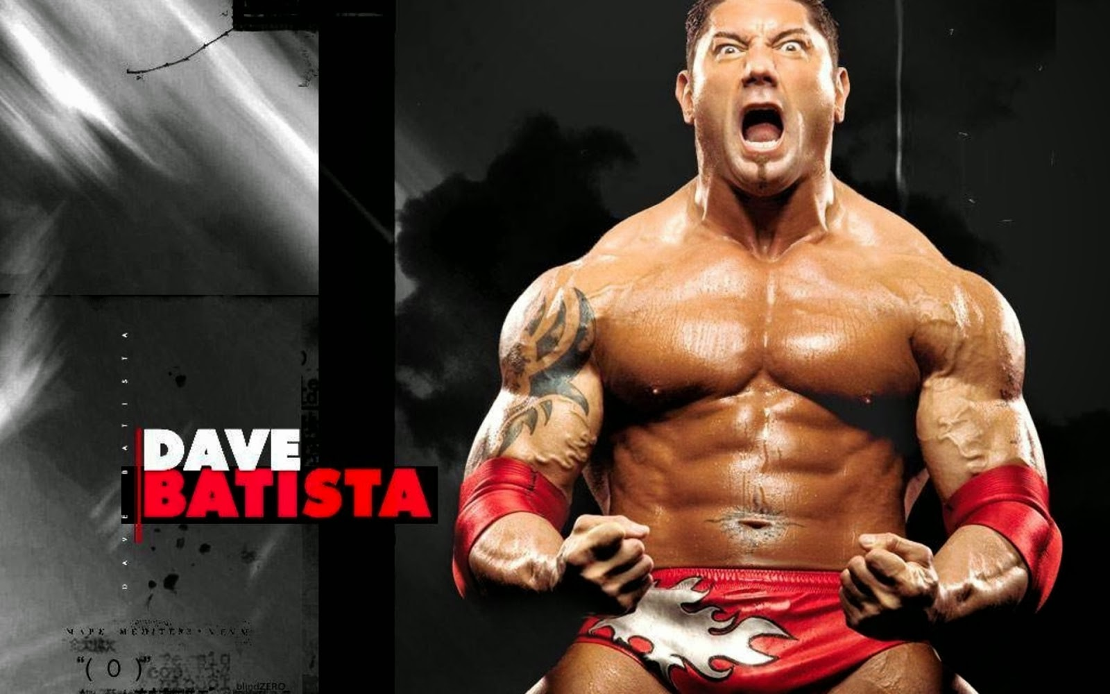 wwe superstars and all wwe wrestlers hd wallpapers