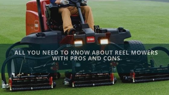 All You Need To Know About Reel Mowers With Pros And Cons