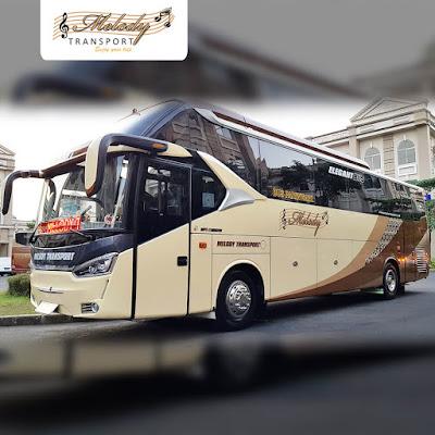 Alasan Menggunakan Bus Pariwisata