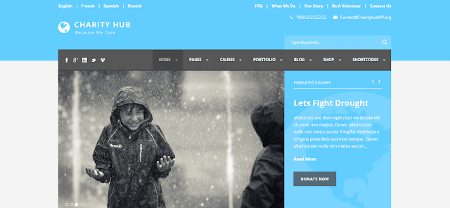 Nonprofit Fundraising & Charity WordPress Themes With Donation System    Charity Hub