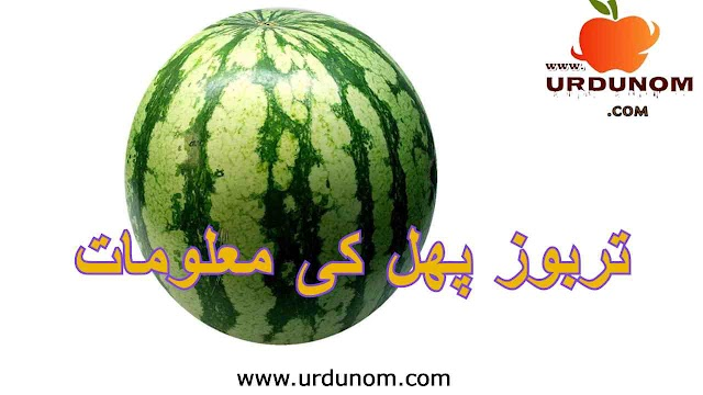 تربوز پھل کی معلومات | Watermelon fruit information in urdu