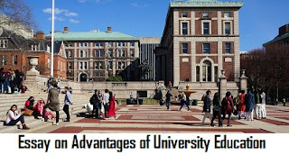Essay on Advantages of University Education