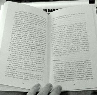 Detectivii salbatici de Roberto Bolano. Recenzie - partea I