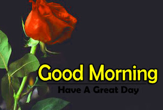 New Good Morning 4k Full HD Images Download For Daily%2B74