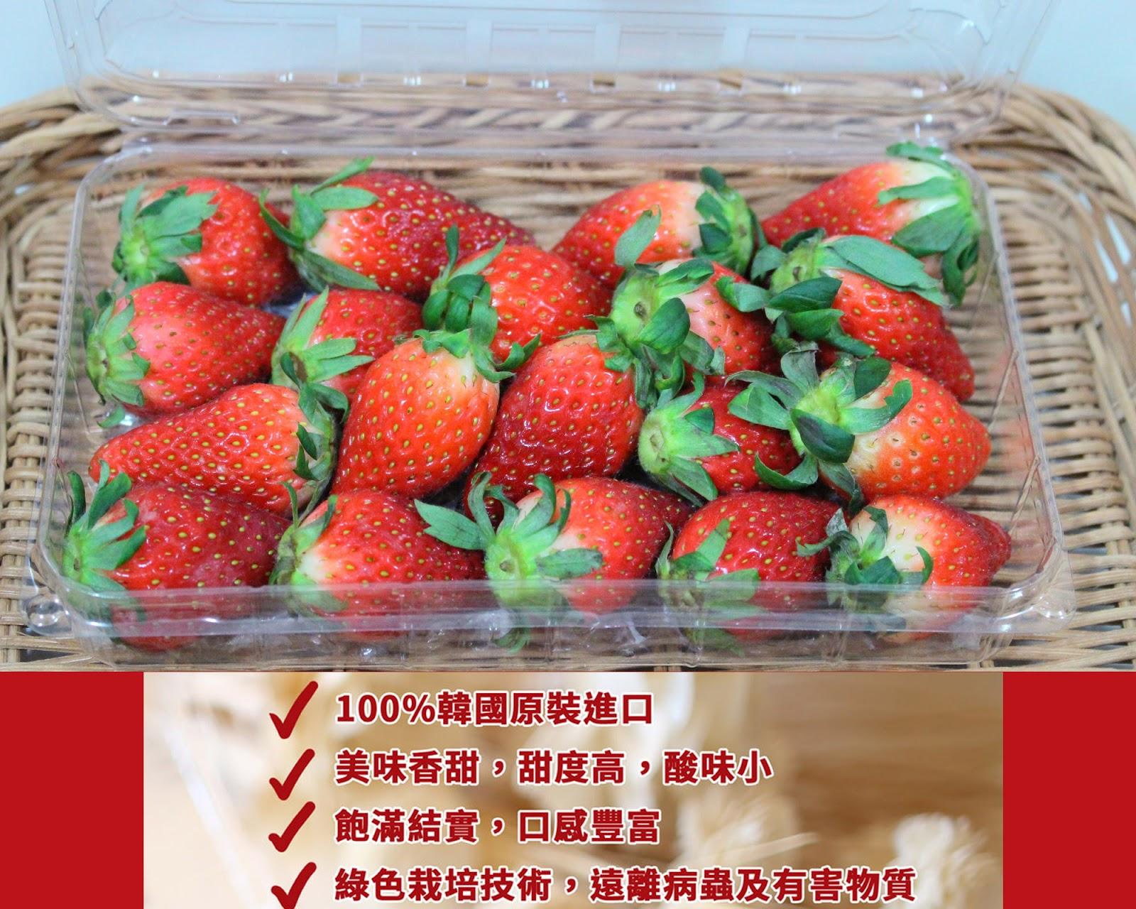 【韓國水果】美味香甜的韓國 ILPrimo 韓國每香士多啤梨   小彤畫集 SiuTung – U Blog 博客
