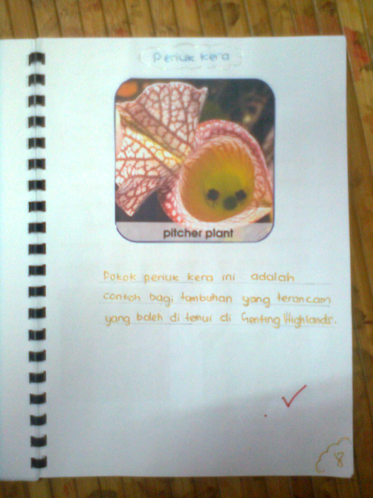 Contoh Buku Skrap Diri Saya Contoh Ole Cute766