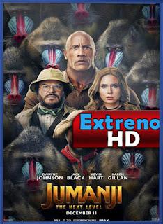 Jumanji: El siguiente nivel (2019)   DVDRip Latino HD GoogleDrive 1 Link