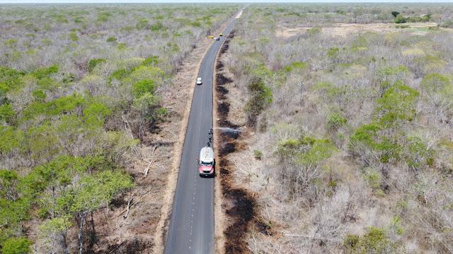 SCT Yucatán y la Conafor coordinan acciones de brechas cortafuego en la vía Mérida-Celestún