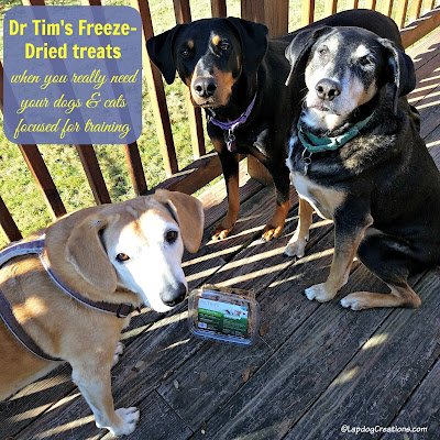 rescue dogs freeze dried treats turkey