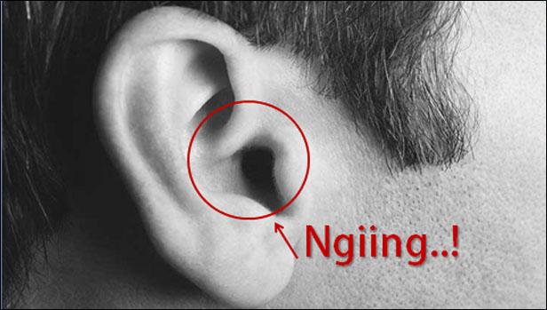Telinga Kanan Berdenging