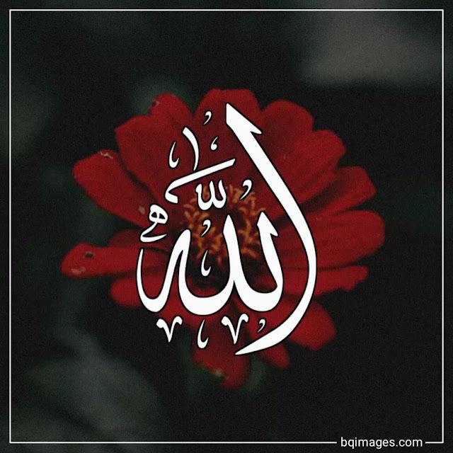 beautiful allah pictures