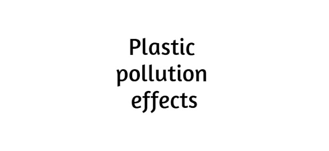 Plastic pollution effects