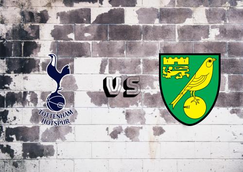 Tottenham Hotspur vs Norwich City  Resumen y Partido Completo