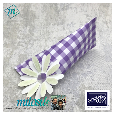 Gingham Gala #simplestamping cards and gift bag, shop online 24/7 with mitosu crafts