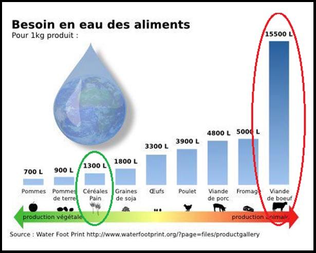 La nature de l 39 eau empreinte en eau et eau virtuelle - Quantite de viande par personne par jour ...