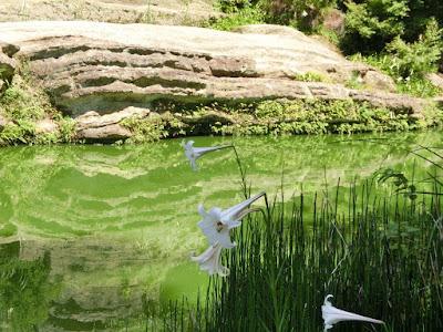 円覚寺名勝庭園
