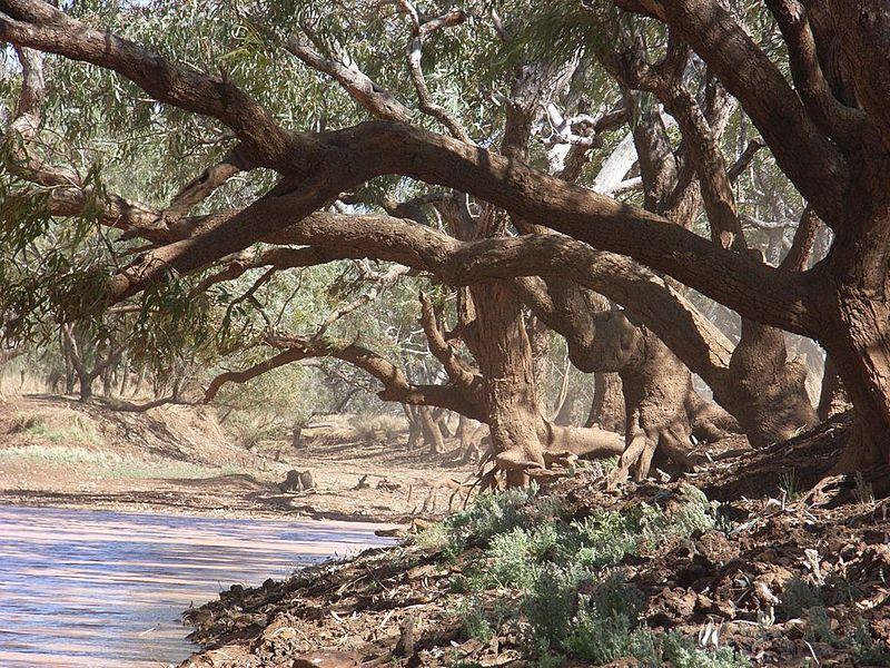 Bytes Australian Folk Songs Part 1
