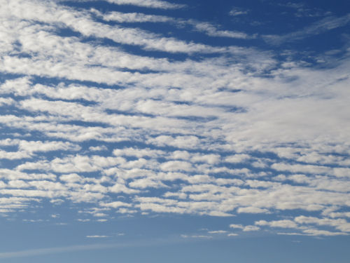 Stratocumulus undulatus clouds