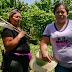 Mujeres rurales salvadoreñas se empoderan con sistema de ahorro comunitario