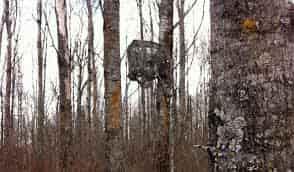 Persianas de pie de árbol y soporte de árbol
